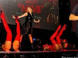 Бизнес - Элитный ночной клуб, дискотека, VIP в Болгарии - фото 3