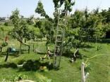 Дом в 15 км от Варна - фото 2