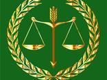 Адвокат Александров в Болгарии - фото 1
