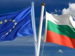 Болгарского бизнес на продажу