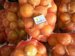 Экспорт сельхозпродукции из Узбекистана