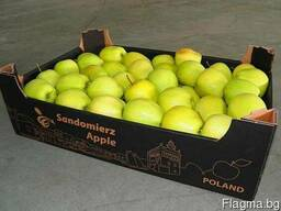 Package and packing of apple - boxes, corrugated boxes - photo 3
