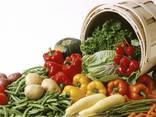 Сушеные овощи и зелень от производителя ! - фото 8