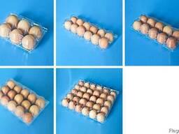 Упаковка для ягод , клубники , яиц, мяса, фрукты прозрачная - фото 5