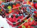Упаковка для ягод , клубники , яиц, мяса, фрукты прозрачная - фото 6